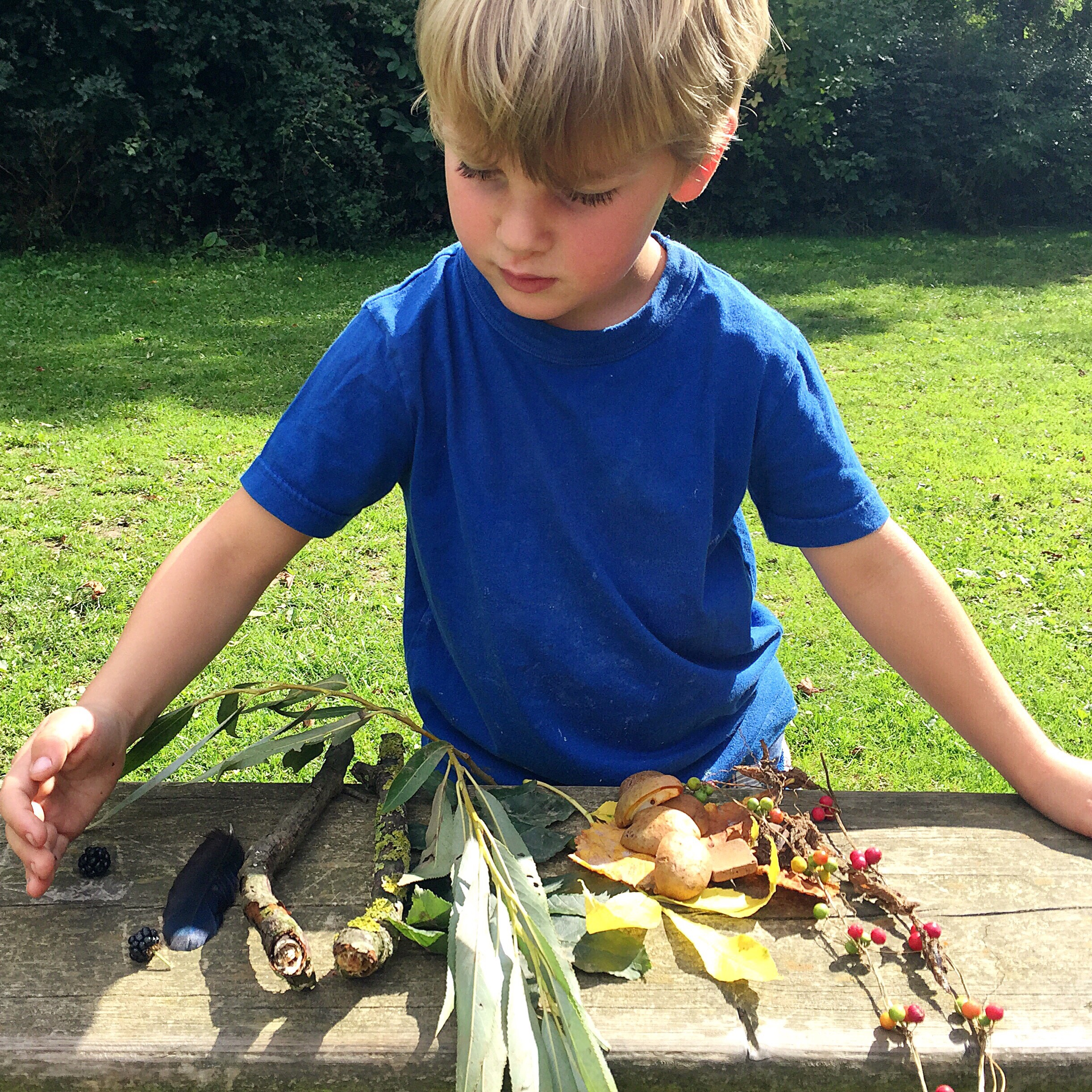 My son organising the colourful items he found for his nature rainbow.