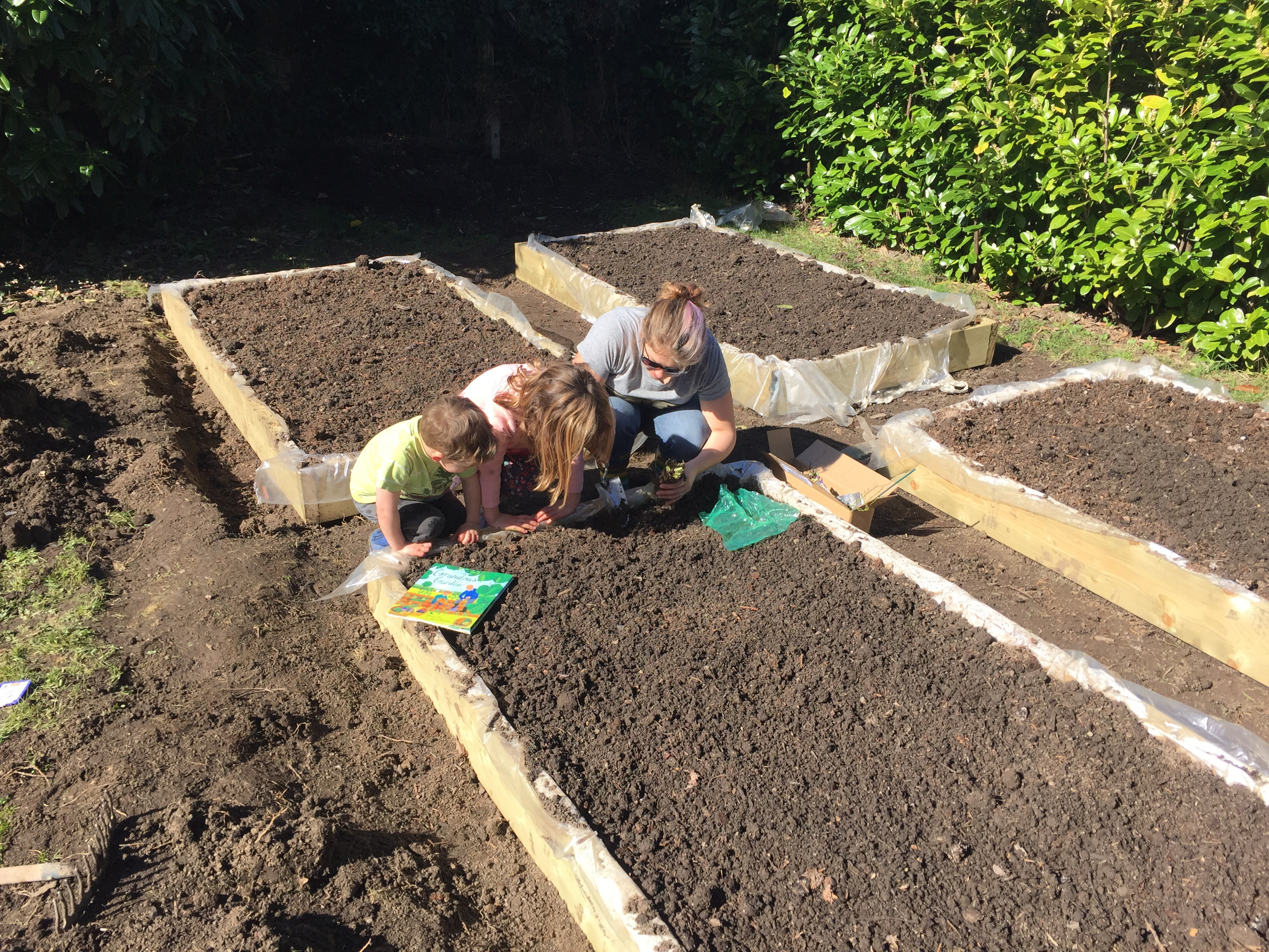 How to make raised beds for veggies and what to plant each month.