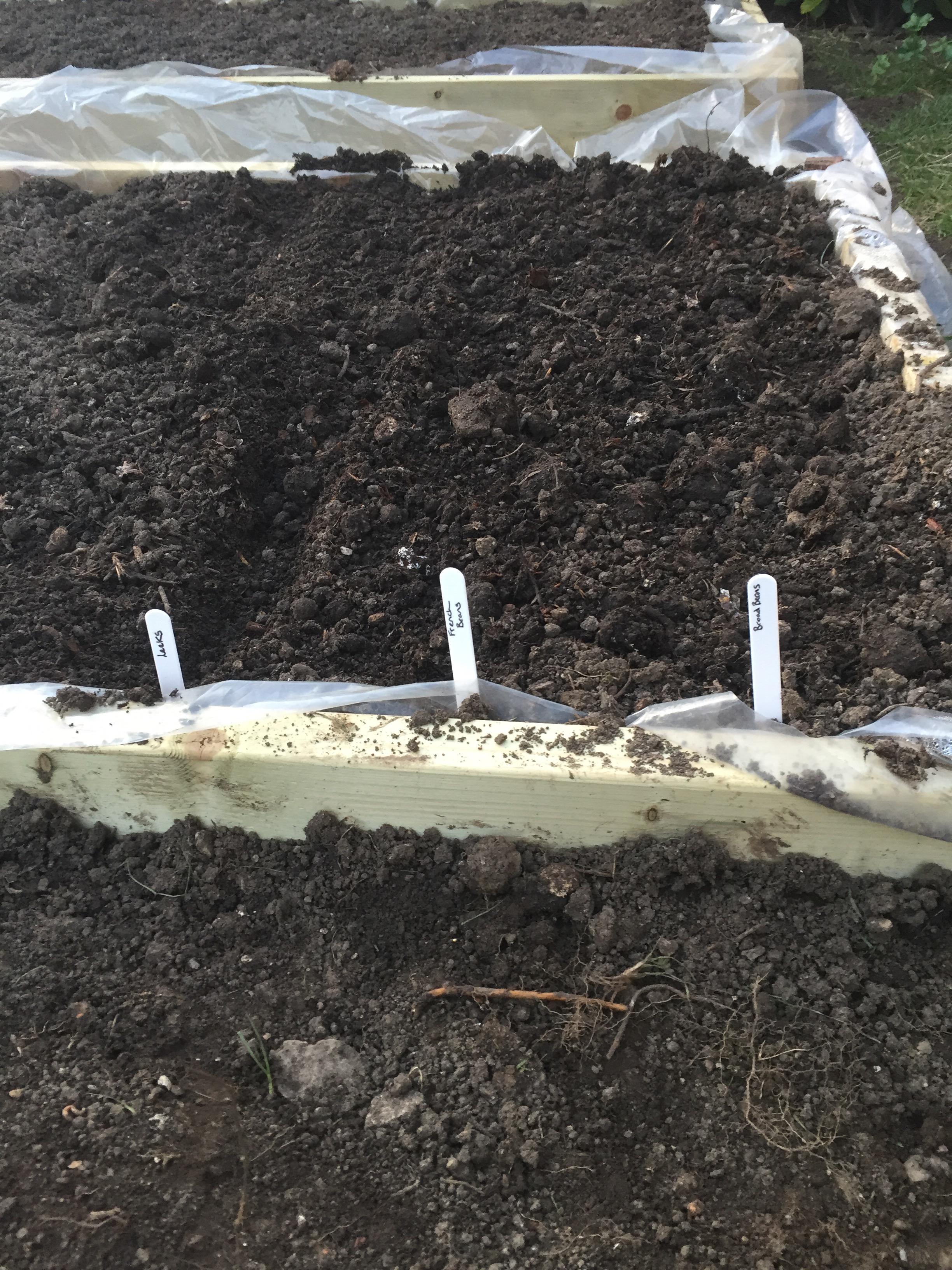 Gardening, I wish I was good at it!