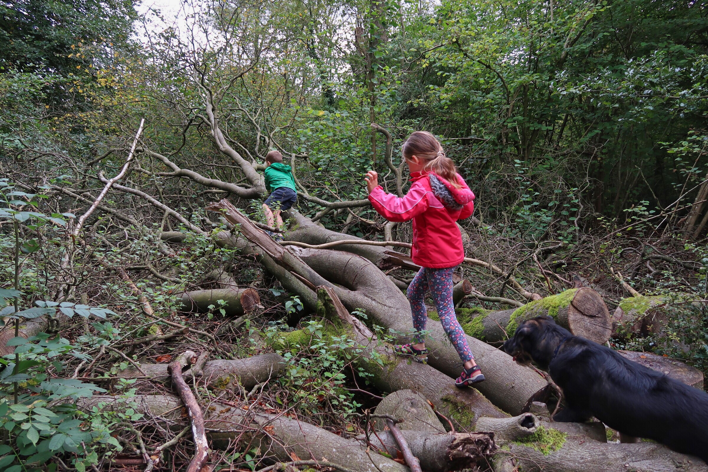 Things to do with kids in Gloucestershire