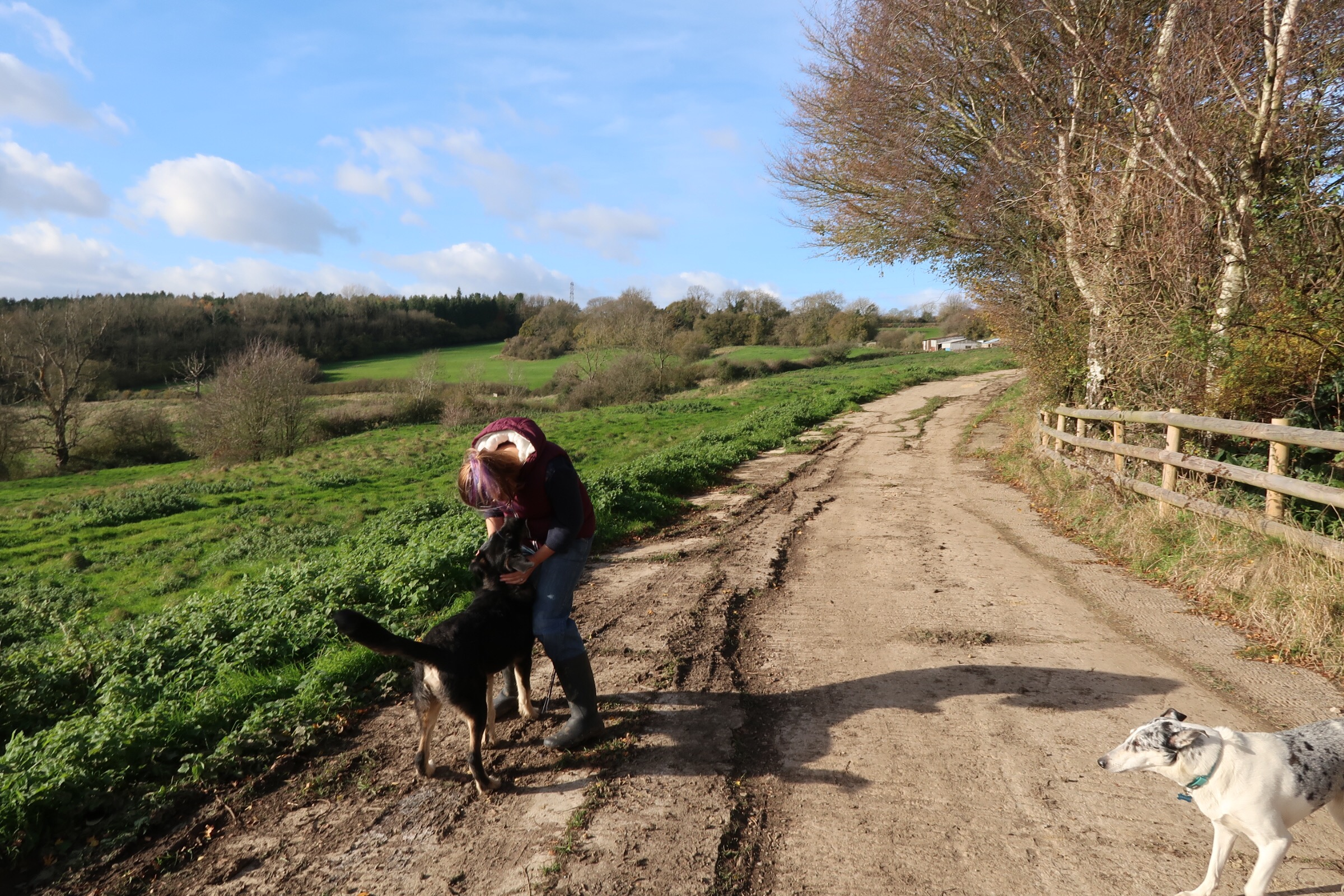 Taking the lead with Millets and Barney!