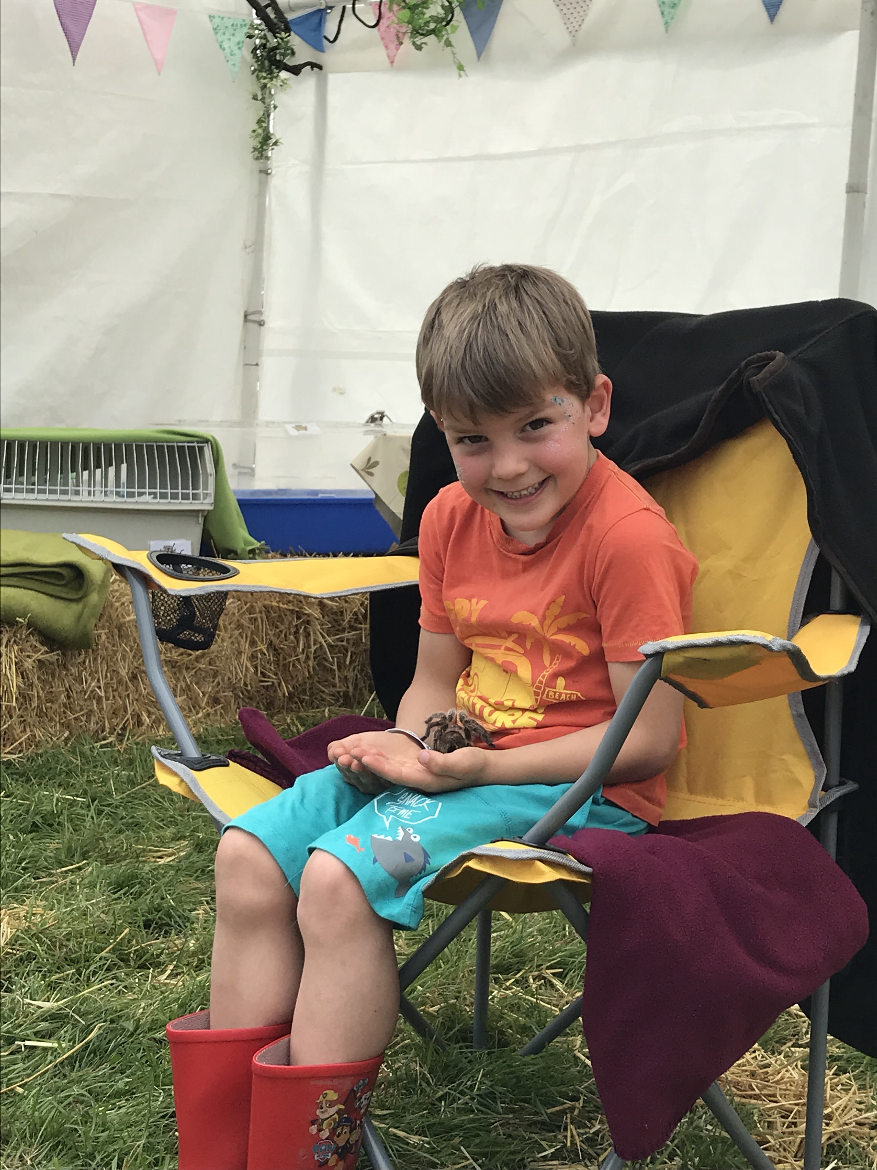 In a pretty tent, decorated with bunting, my son sits in a yellow camping chair, wearing an orange t-shirt, green shorts and red wellies, he beams proudly as he holds a large tarantula on his lap.