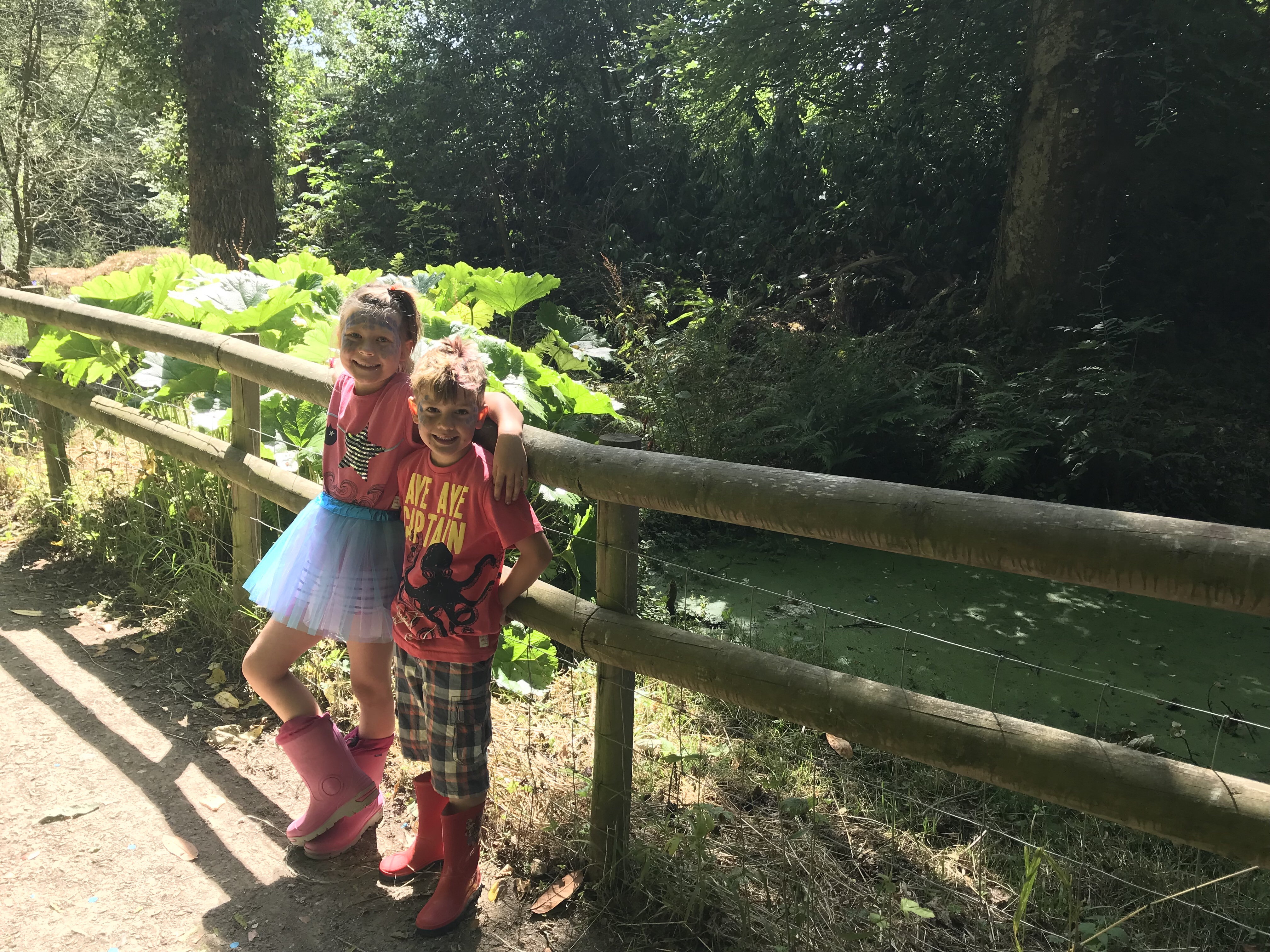 We daughter stands by a wooden fence in a tutu with blue facepaint, one arm slung around her little brothers' neck. Both are smiling angelically. It is a sunny day and they are in a beautiful wood. A blog post about warring siblings.