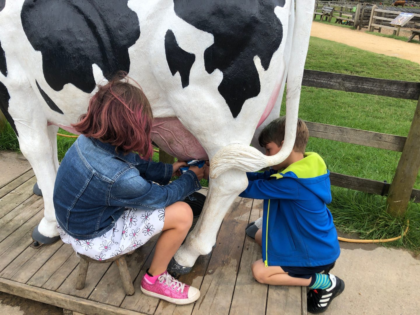 My two children having a go at 'milking' the pretend cow at the Cotswold Farm Park.