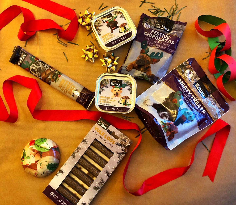 A festive flatlay of dog treats available from Webbox.